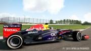 F1 2013 (2013/RUS/Region Free/LT+2.0)