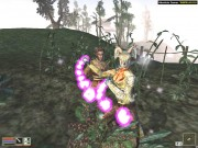 The Elder Scrolls III Morrowind Overhaul (2011/RUS/RePack)