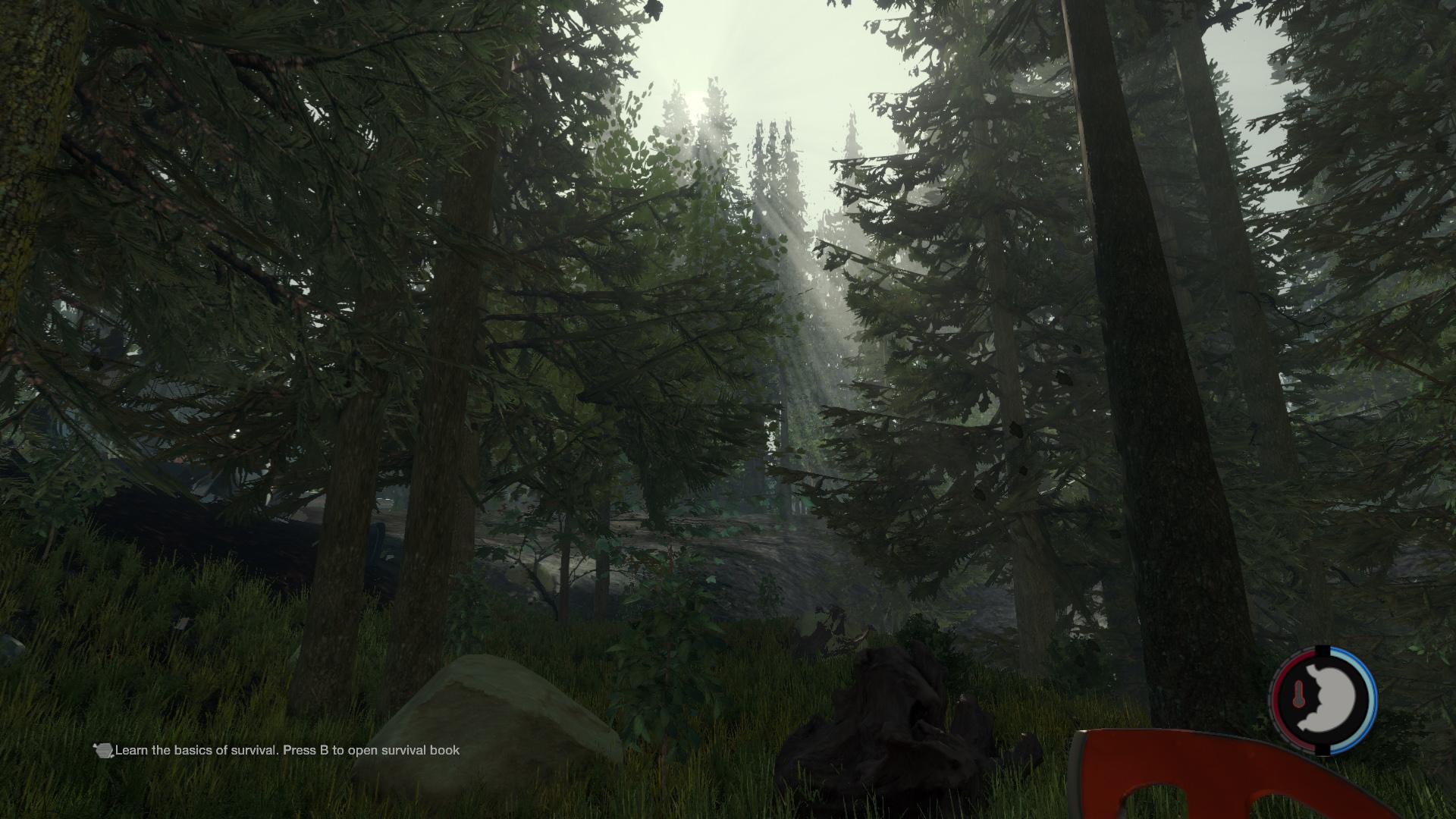 Скриншот The Forest v0.10 (RePack) Alpha